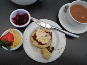 Scones, strawberry jam, clotted cream (unsweetened), hot tea and it was Mmm, Mmm today at 4pm.