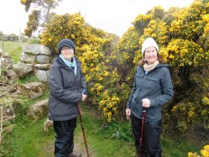 Marty and Jan pose at a gorse bedecked stile.