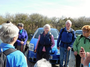 Margaret Cartwright (and husband Tim) led a walk through Tehidy Woods and along the coast.