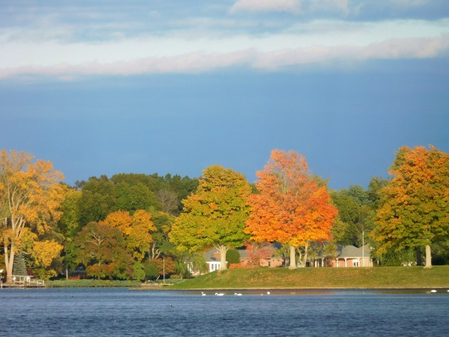 View upriver to the St. Joe Manor point, one of my favorite harbingers of the changing season.