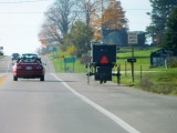 Amish live in Newago County.
